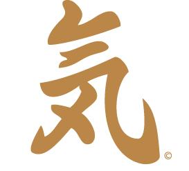 Ninja Coaching Ki - Energy